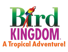 Bird Kingdom Promo Codes