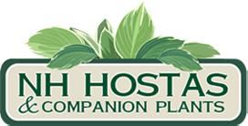 NH Hostas Promo Codes