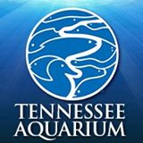 Tennessee Aquarium Promo Codes
