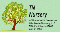 Tn Nursery Promo Codes